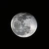 Waning moon, old Samyang 100-500mm